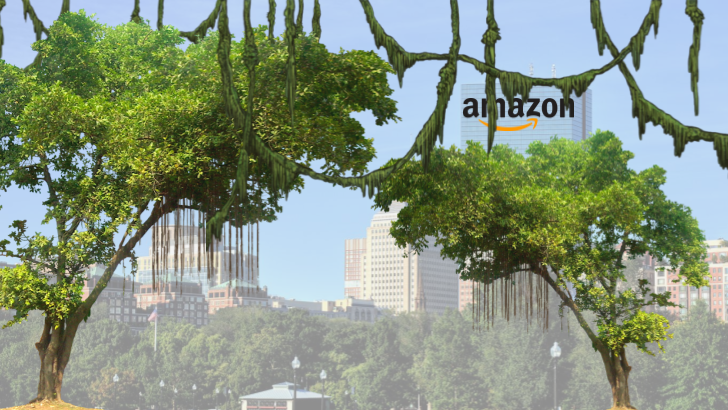 Stop the Amazon Boston Deal